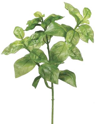 "Basil Bush 9"" Green"