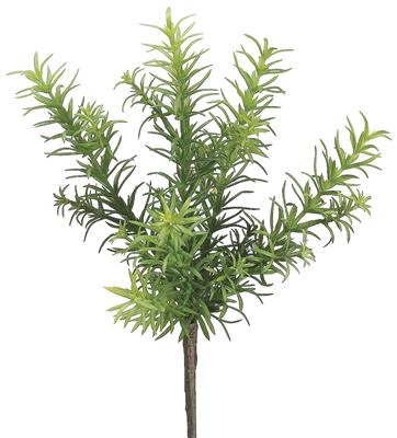 "Rosemary Bush 11"" Green"
